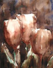 Rembrandt tulpjes
